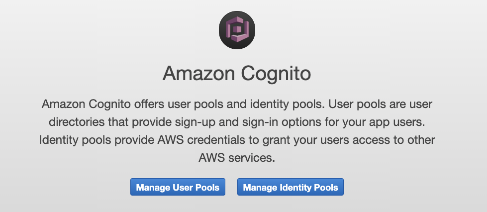 Image of the Amazon Cognito Dashboard entry page