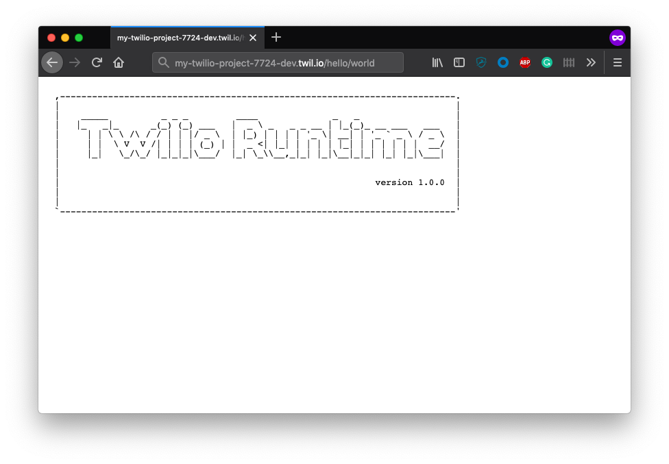 Twilio runtime page