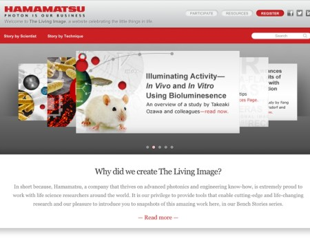Hamamatsu needed a new consumer-facing site to educate people on the types of research they conduct.