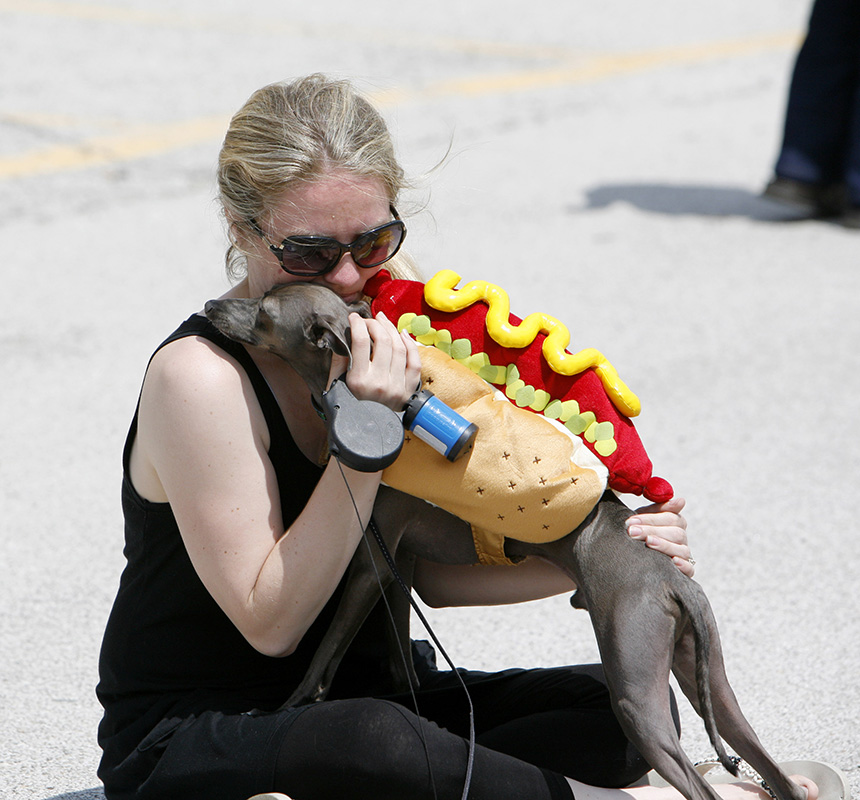Stacy Phayer sits with her dog Guisippi, an Italian greyhound before the North Aurora Days Pet Parade on Sunday afternoon. Kevin Sherman/ksherman@dailyherald.com/©Daily Herald