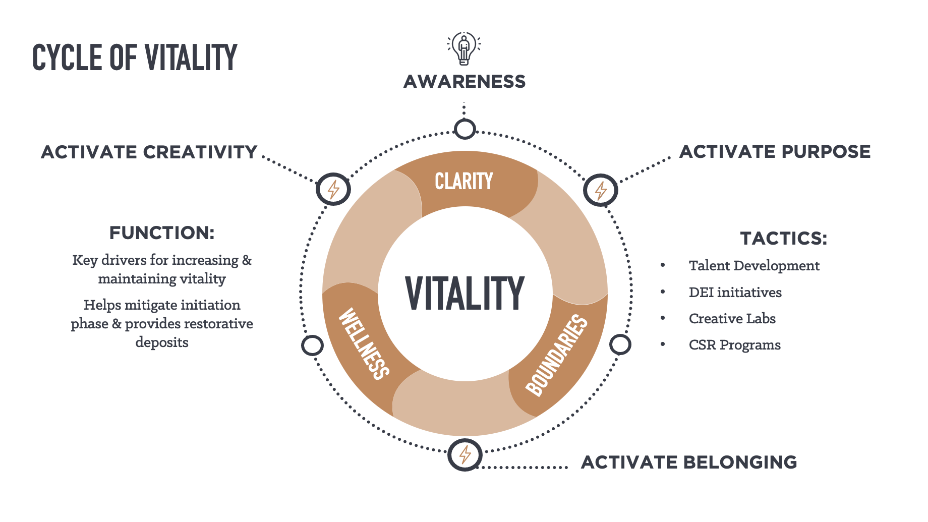 Phase 3 of the Vitality Model: Activating Purpose, Belonging & Creativity