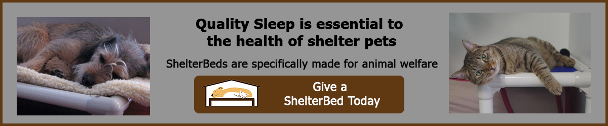Florida Rottweiler Rescue Ranch has partnered with Kuranda ShelterBeds to provide comfortable, lasting beds for the dogs in our care