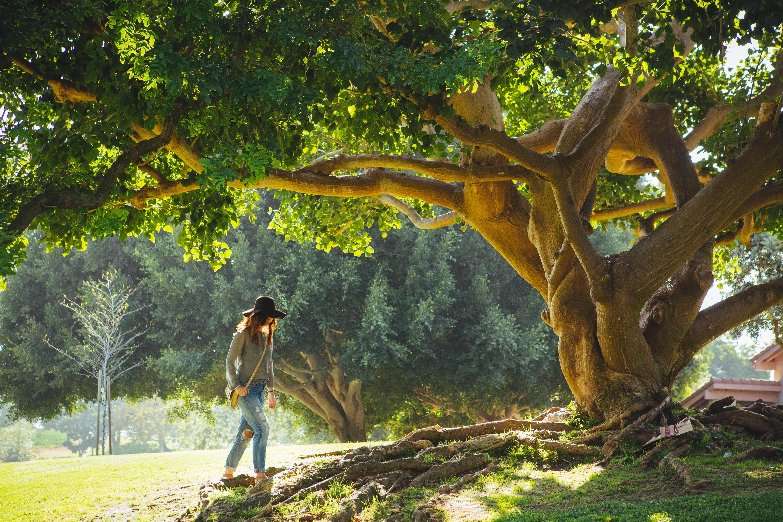 woman-under-tree