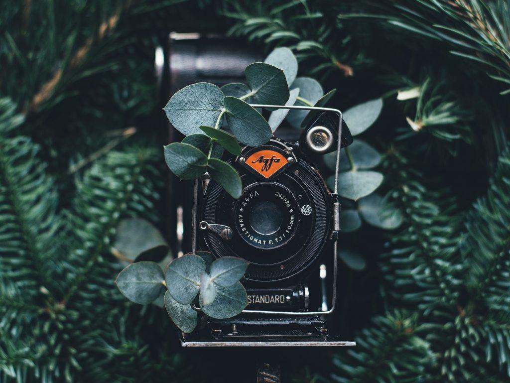 eco-conscious-photography