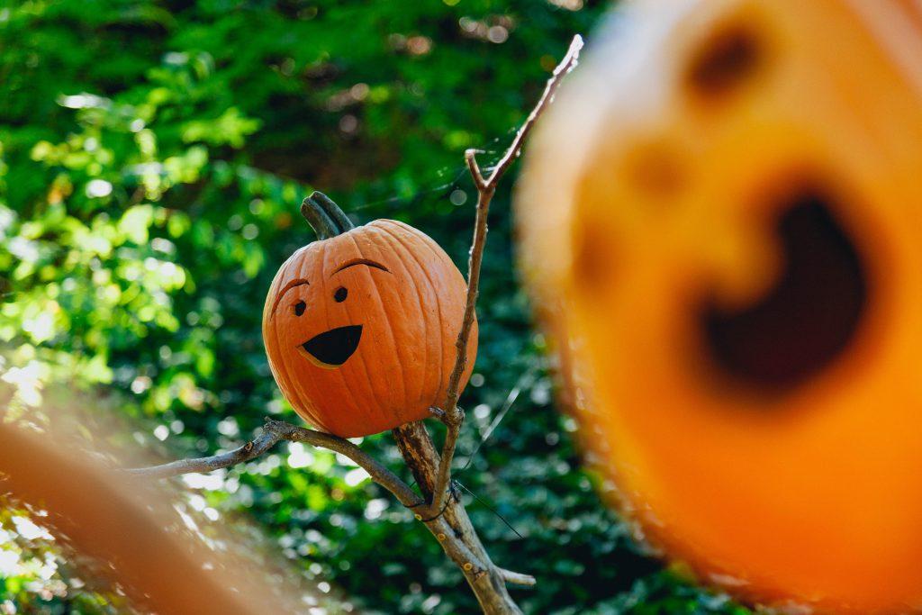 sustainable-halloween