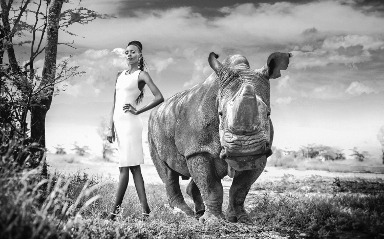 model-in-white-dress-posing-next-to-rhinocerous-in-the-wild