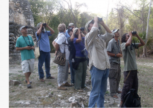 group-of-tourists-with-binoculars-birdwatching