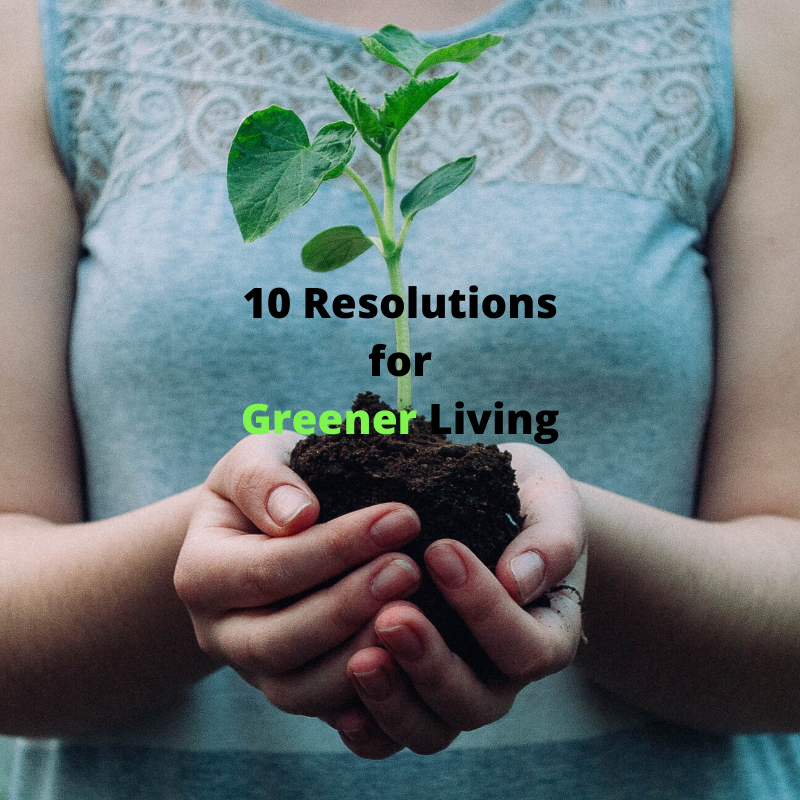 resolutions-for-greener-living