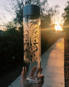 etching-bee-bottle-with-sunshine-revealing-plant-design