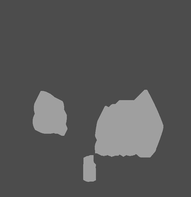 Languages & Travel_logo-gray