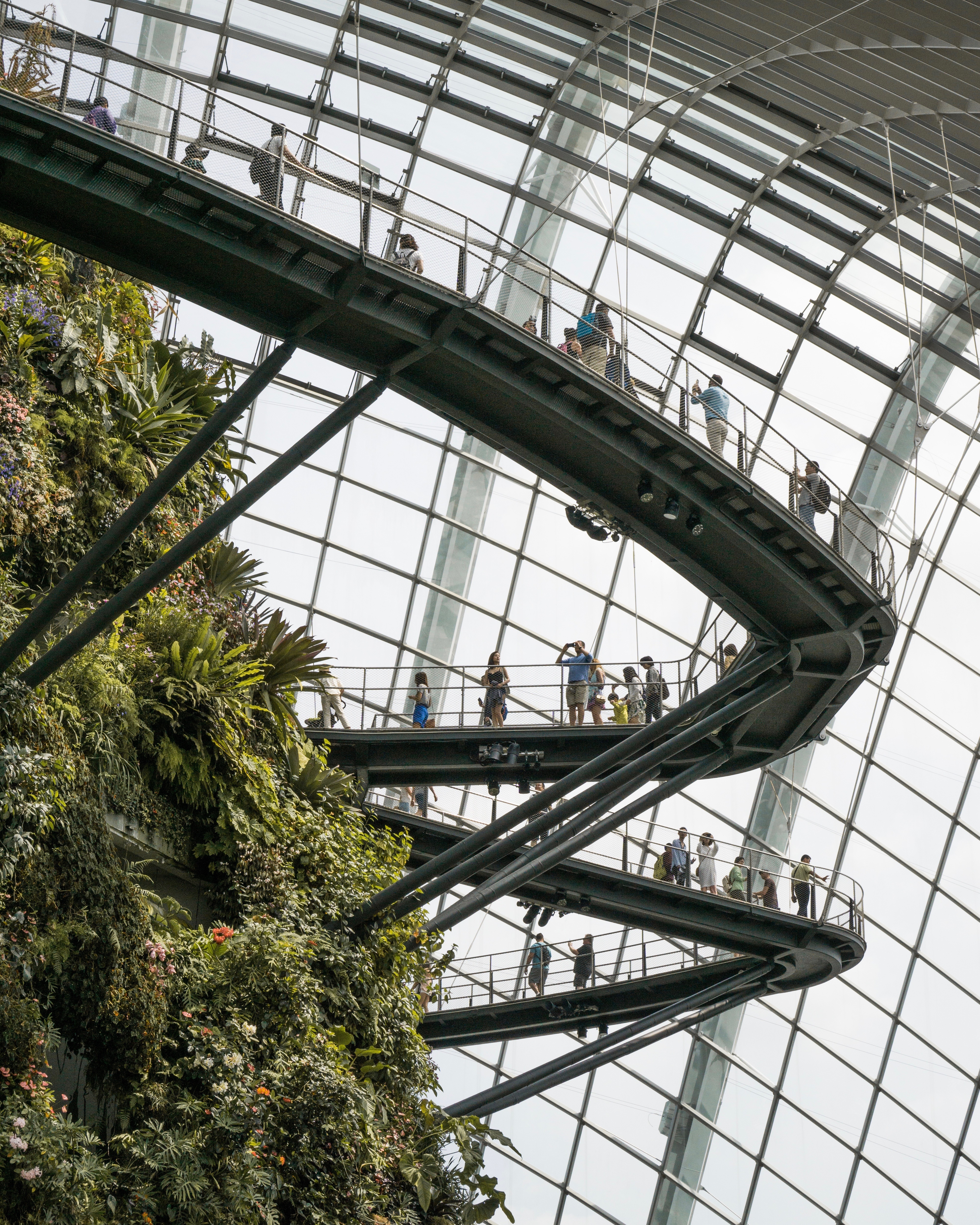 Photo of people standing on skyway beneath glass ceiling in building