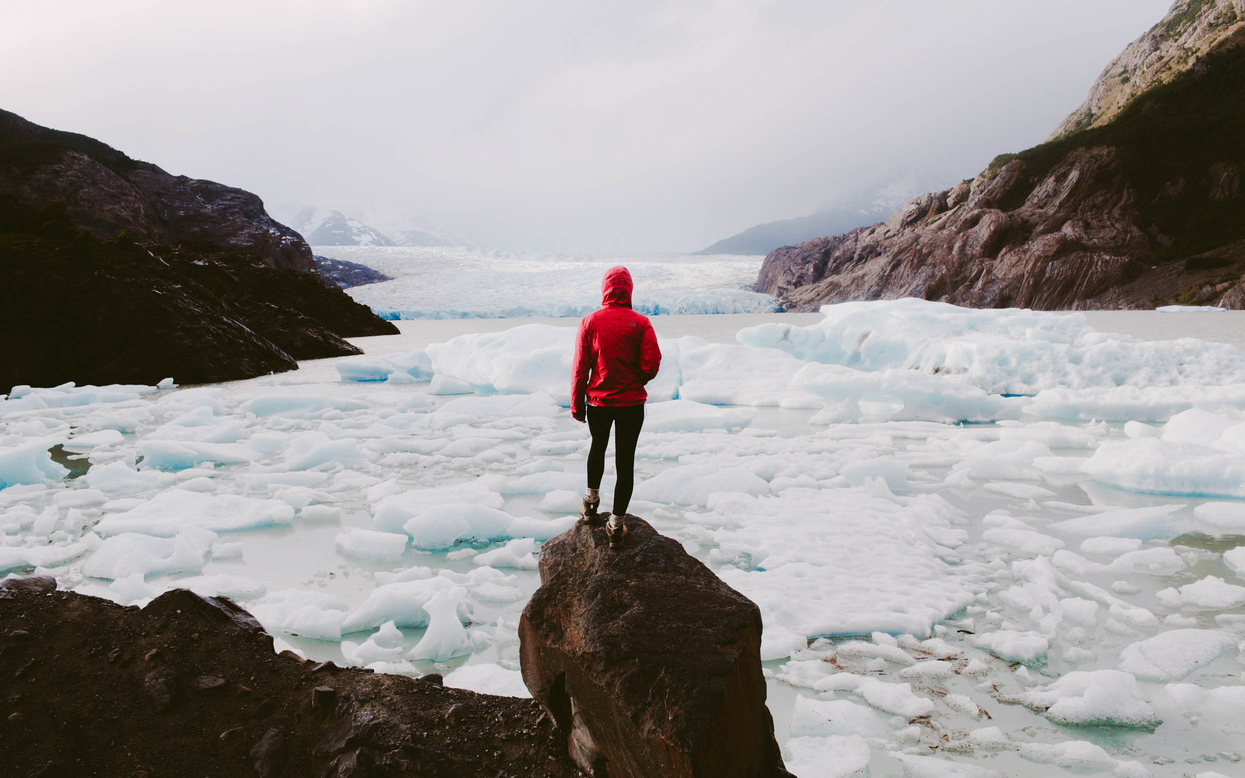 A person in a red jacket looking over an arctic scene