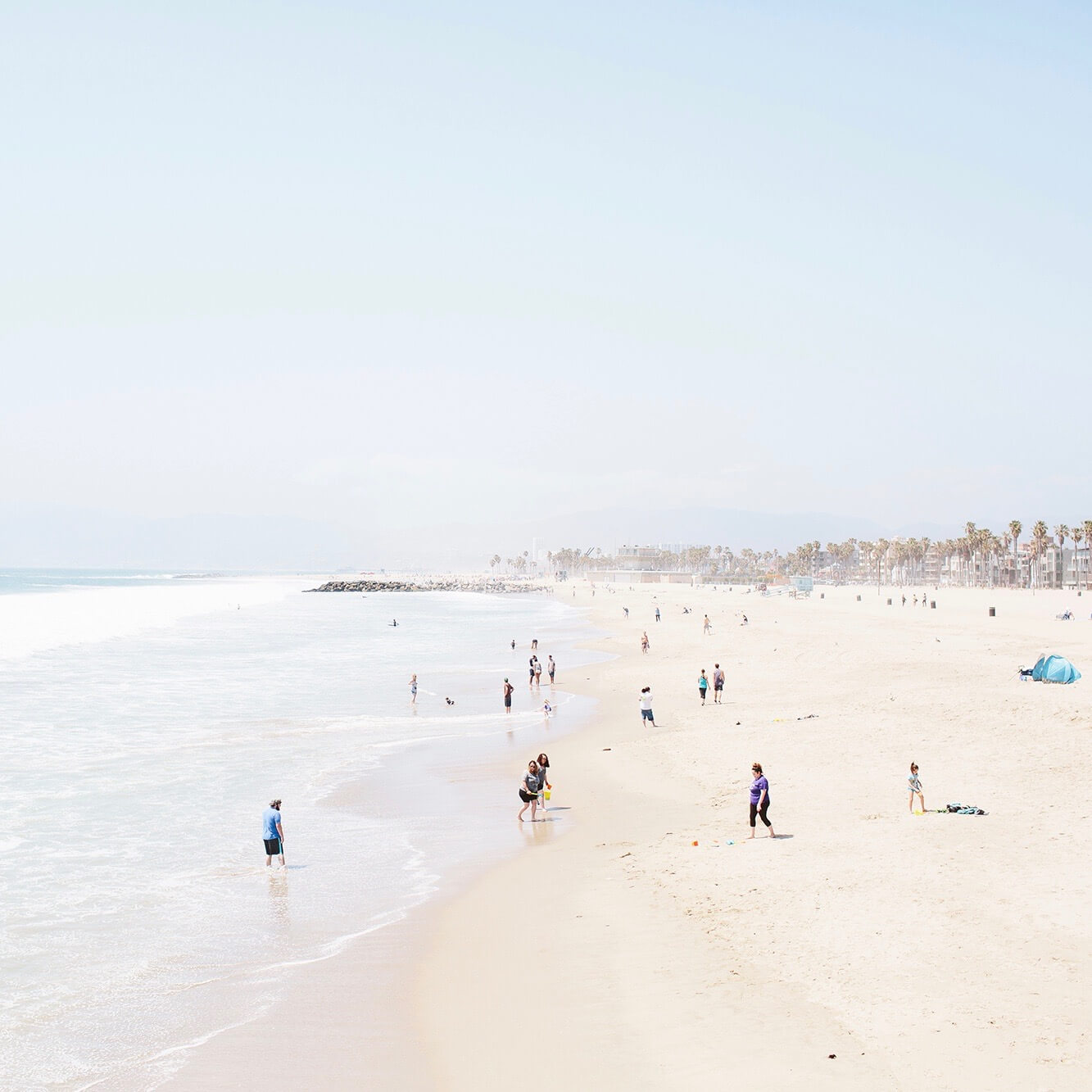Venice beach during the day