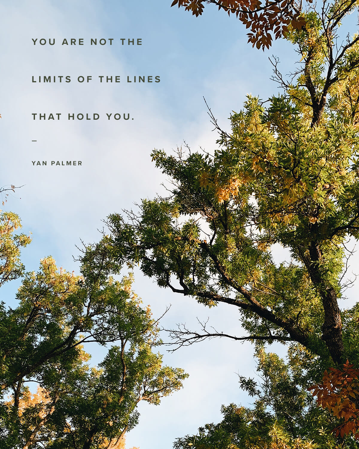 You are not the limits of the lines that hold you