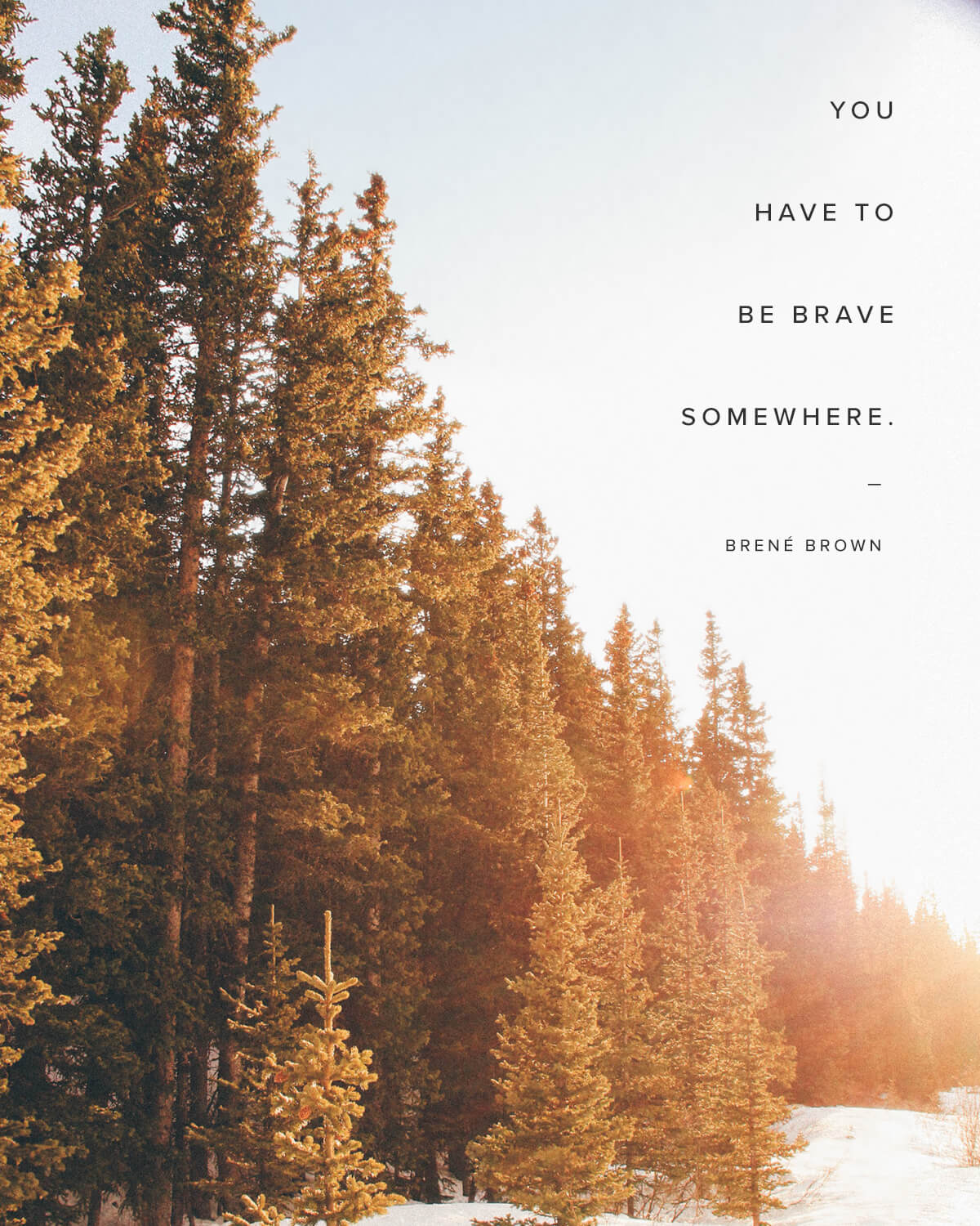 You have to be brave somewhere