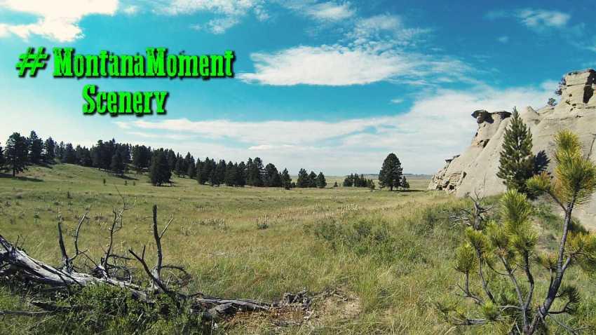 #MontanaMoment Scenery