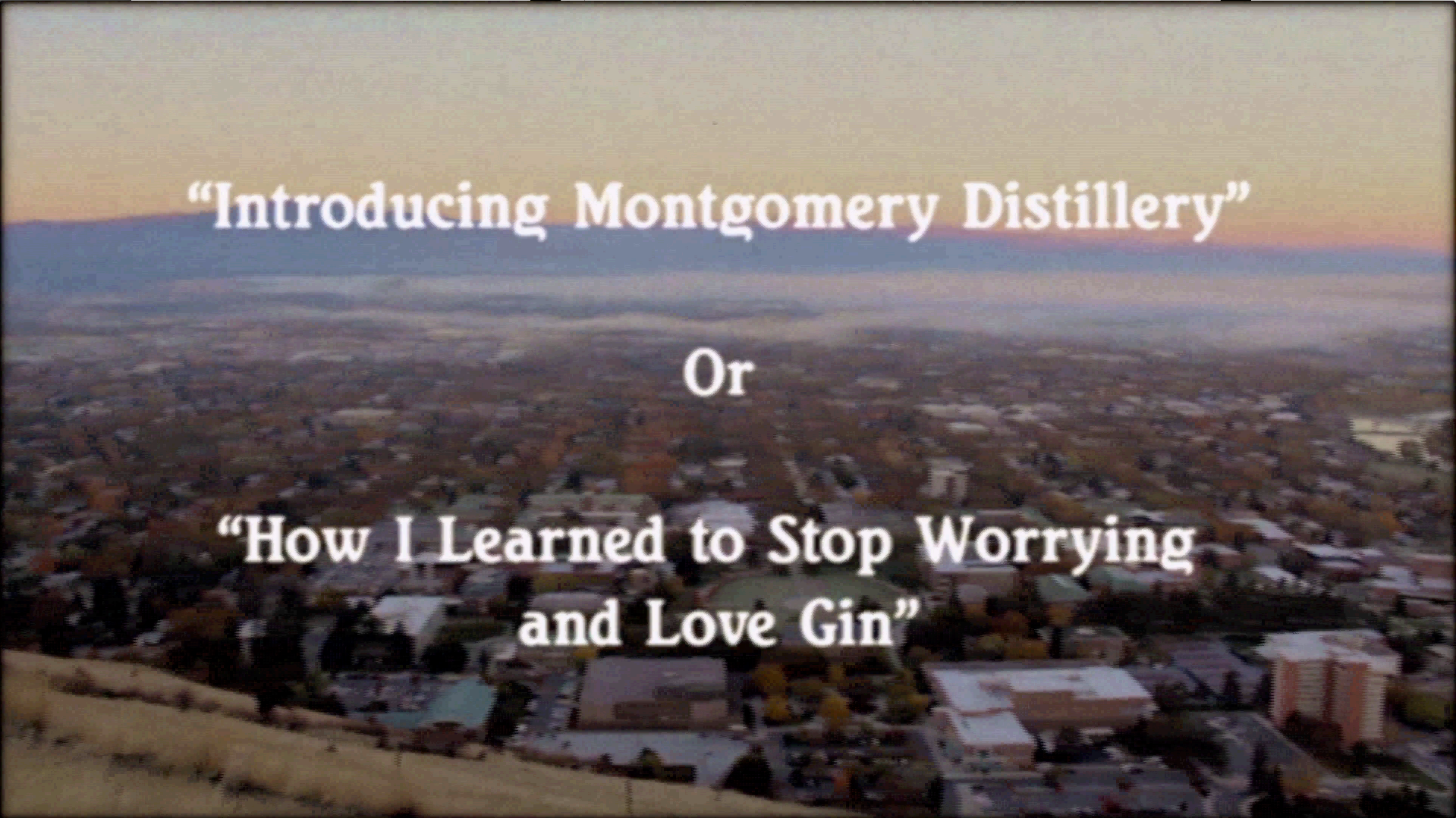 How I Learned to Stop Worrying and Love Gin