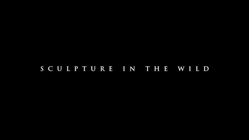 Sculpture in the Wild (1 minute teaser)