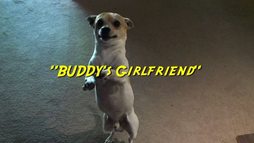 Buddy's Girlfriend