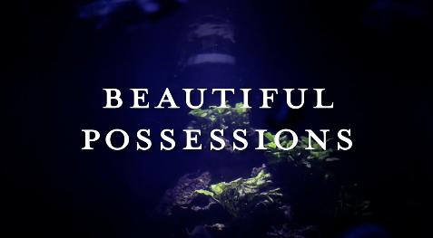Beautiful Possessions