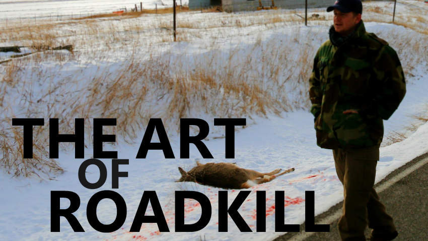 The Art of Roadkill