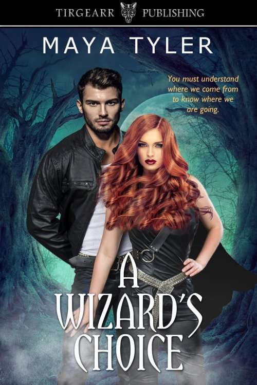Featured Post: A Wizard's Choice by Maya Tyler
