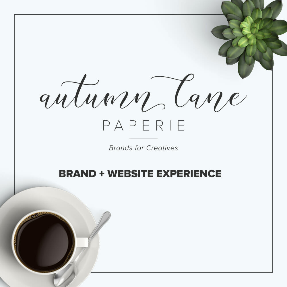 Autumn Lane Paperie Boutique Business Branding & Web Design Experience