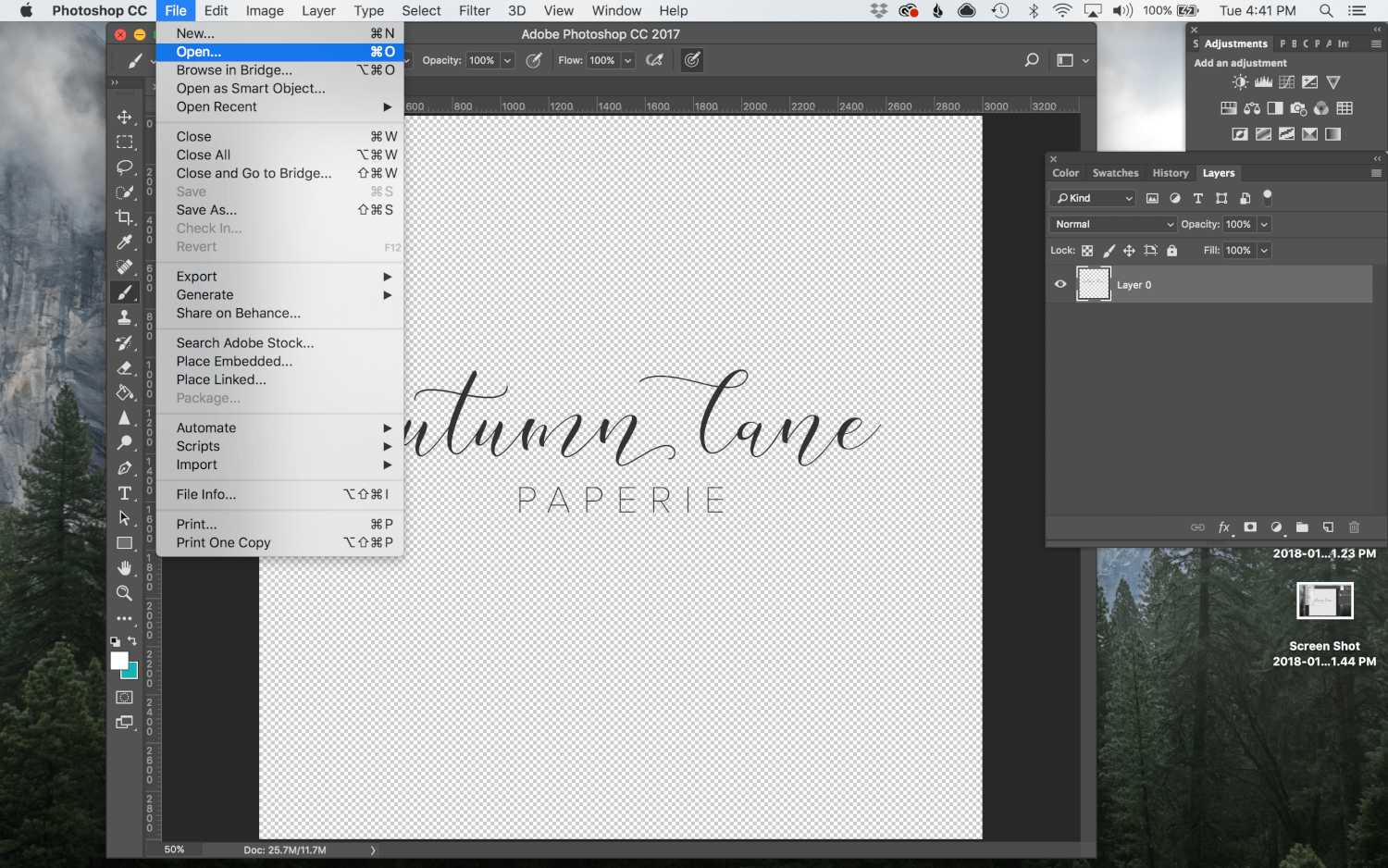 ALP Tutorial: Watermarking in Photoshop & Lightroom