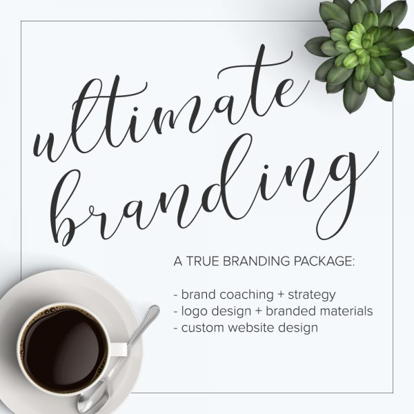 Autumn Lane Paperie Ultimate Business Branding Kit