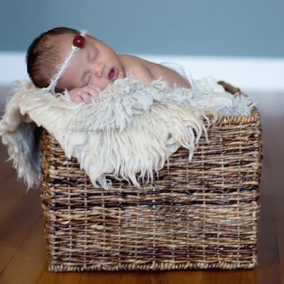 basket of love Sophe B Photography newborn