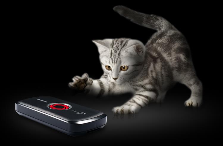 Playful, yet Powerful. A cat playing with LGP lite. Easy to use. H.264 hardware encoder.