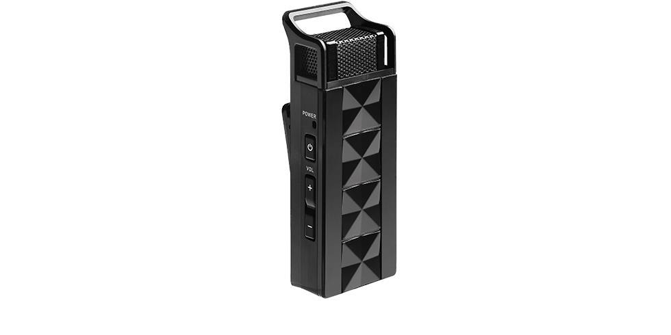 Wireless Teacher Microphone AW313