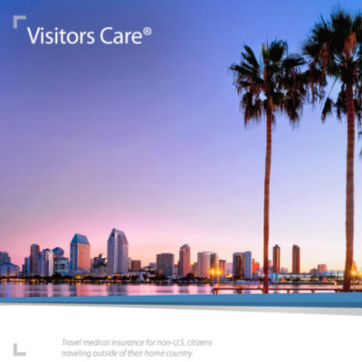 IMG Visitors Care Plan – Review