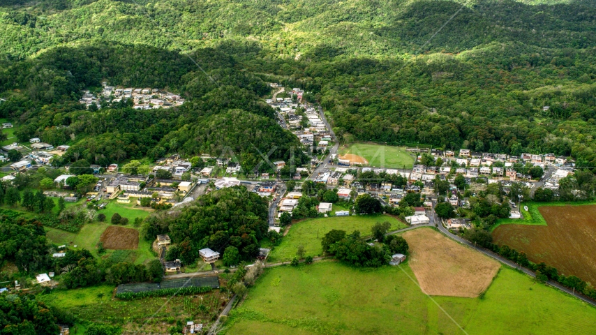 Rural homes and shops among forests, Vega Alta, Puerto Rico  Aerial Stock Photos | AX101_038.0000000F