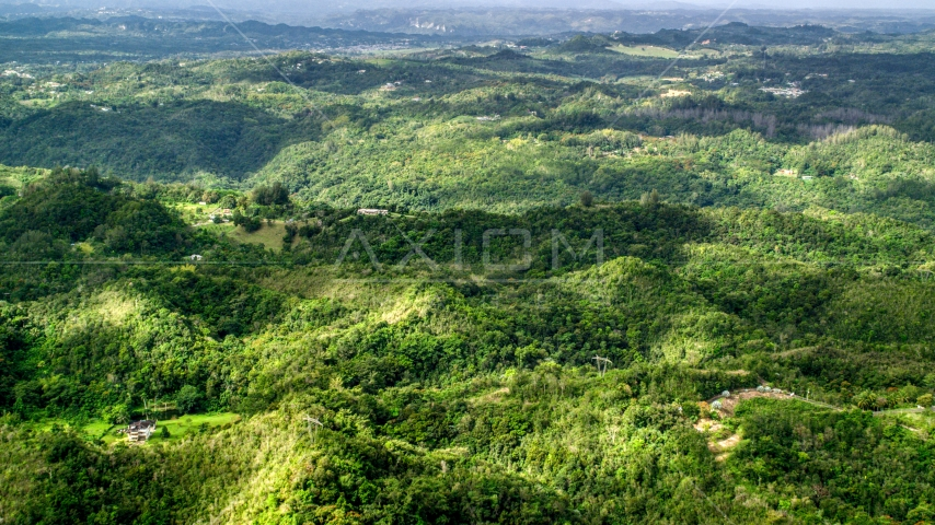 Rural homes partially hidden by tree covered hills, Vega Baja, Puerto Rico  Aerial Stock Photos | AX101_039.0000000F