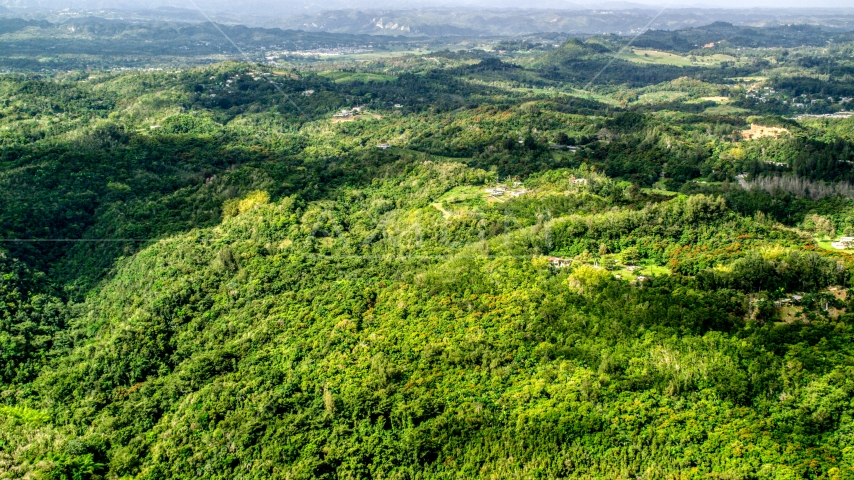 Tree covered hills with rural homes in Vega Baja, Puerto Rico Aerial Stock Photos | AX101_040.0000217F
