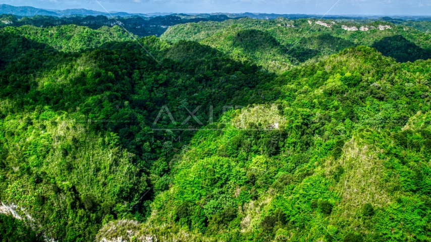 Karst mountains and jungle in Puerto Rico  Aerial Stock Photo AX101_051.0000187F | Axiom Images