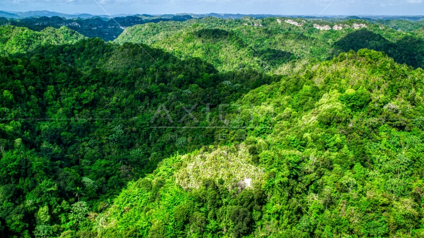 A view of limestone karst mountains covered by jungle, Karst Forest, Puerto Rico  Aerial Stock Photos | AX101_052.0000000F