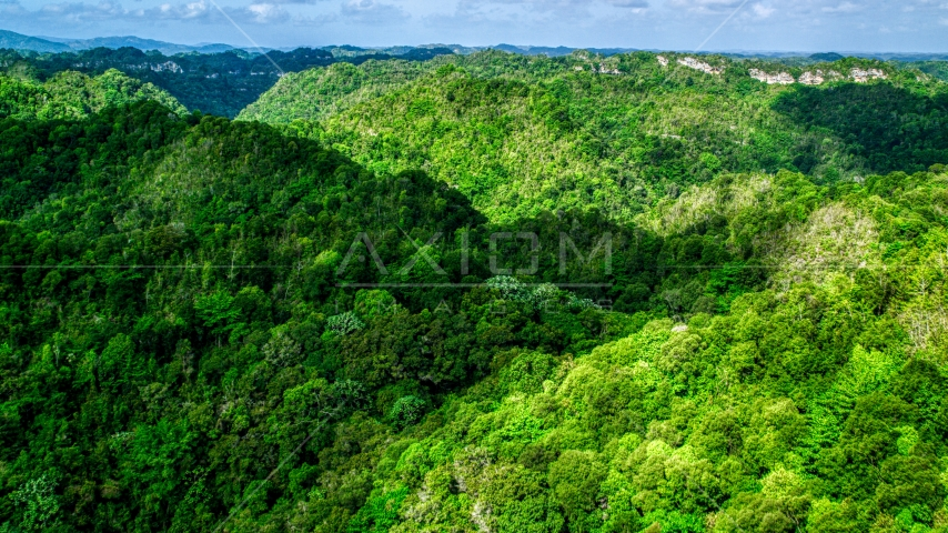 Mountains and jungle of the Karst Forest, Puerto Rico  Aerial Stock Photos | AX101_052.0000197F