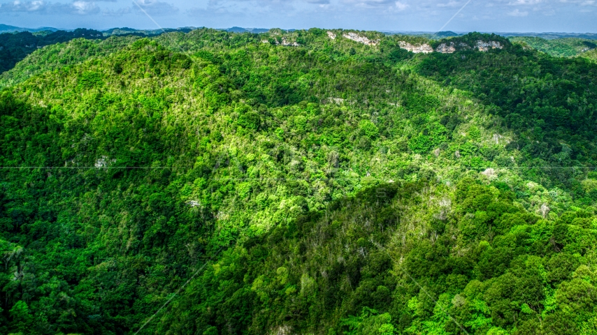 Mountains and jungle in the Karst Forest, Puerto Rico Aerial Stock Photos | AX101_053.0000150F