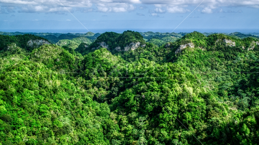 Llush jungle and mountains, Karst Forest, Puerto Rico Aerial Stock Photos | AX101_054.0000284F