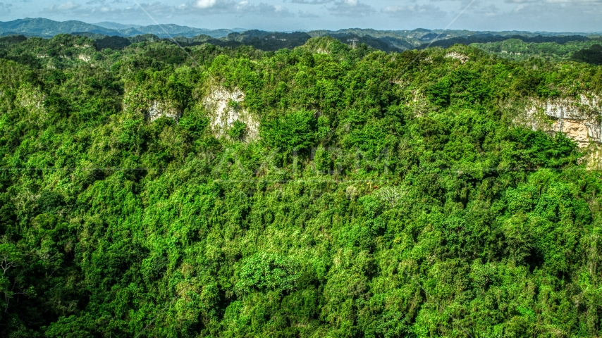 Rocky slope of lush green forests and mountains, Karst Forest, Puerto Rico  Aerial Stock Photos | AX101_062.0000303F