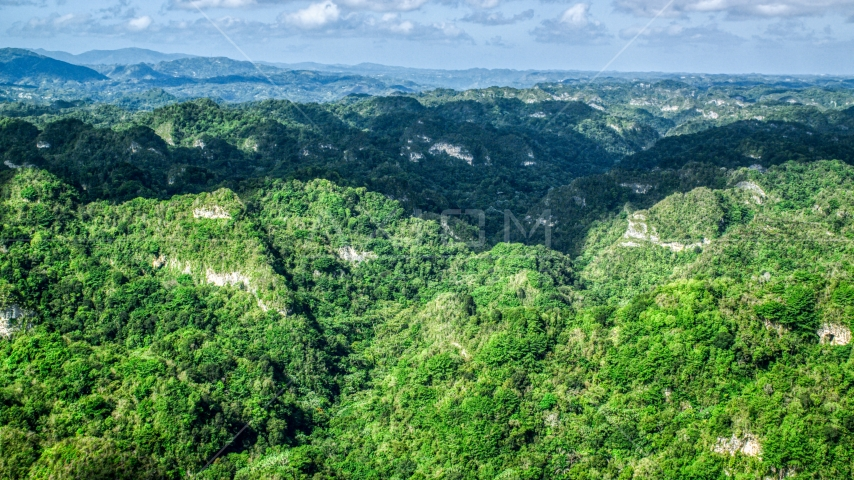 Thick jungle and limestone cliffs in the Karst Forest, Puerto Rico  Aerial Stock Photo AX101_063.0000000F | Axiom Images
