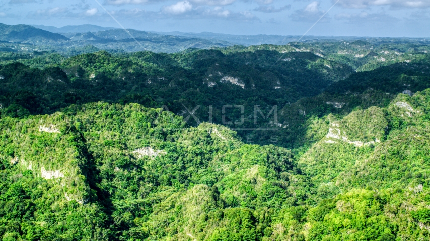 Jungle growth on the limestone cliffs of the karst mountains in the Karst Forest, Puerto Rico  Aerial Stock Photos | AX101_063.0000152F