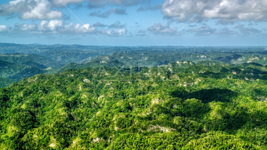 Green jungle and limestone cliffs in the Karst Forest, Puerto Rico Aerial Stock Photos | AX101_067.0000000F