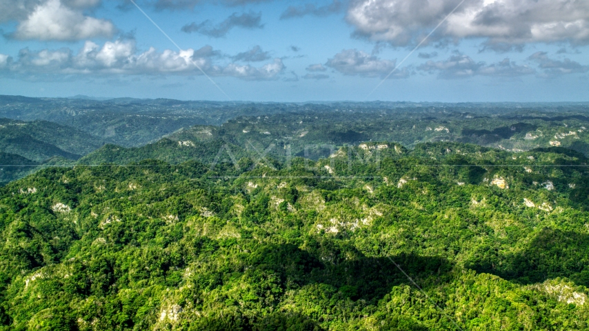 Limestone cliffs and lush green jungle, Karst Forest, Puerto Rico  Aerial Stock Photos | AX101_068.0000000F