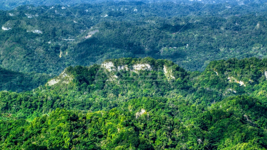 Limestone cliffs with lush green jungle growth in the Karst Forest, Puerto Rico  Aerial Stock Photos | AX101_069.0000000F