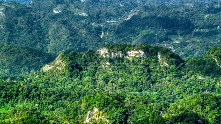Limestone cliffs visible through jungle growth in the Karst Forest, Puerto Rico  Aerial Stock Photo AX101_069.0000189F | Axiom Images