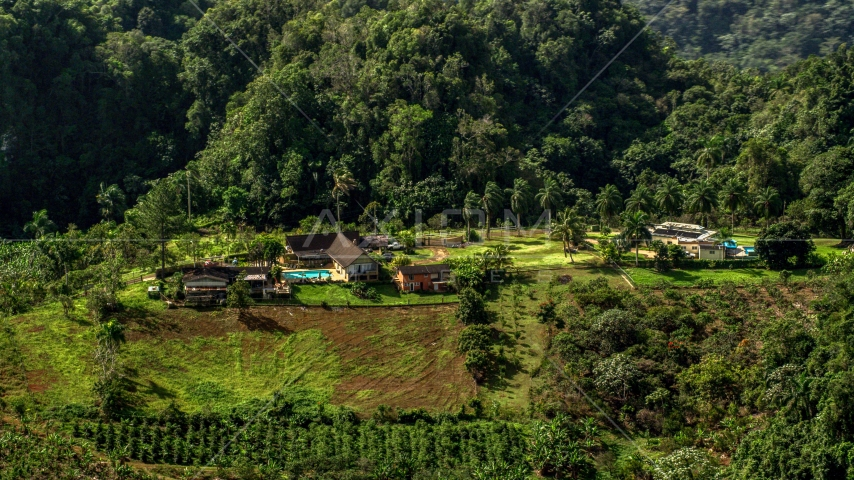 Isolated farmhouse surrounded by lush green forests, Karst Forest, Puerto Rico Aerial Stock Photos | AX101_071.0000000F