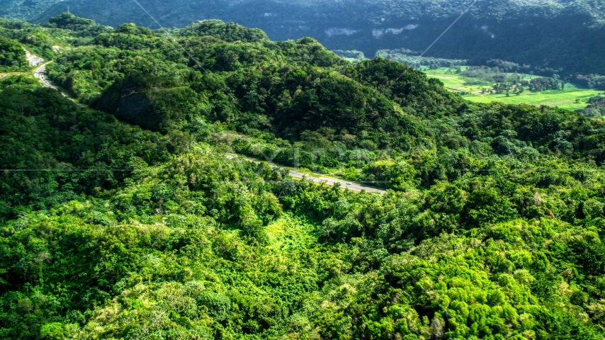 Highway cutting through lush green jungle of the Karst Forest, Puerto Rico Aerial Stock Photos | AX101_076.0000000F